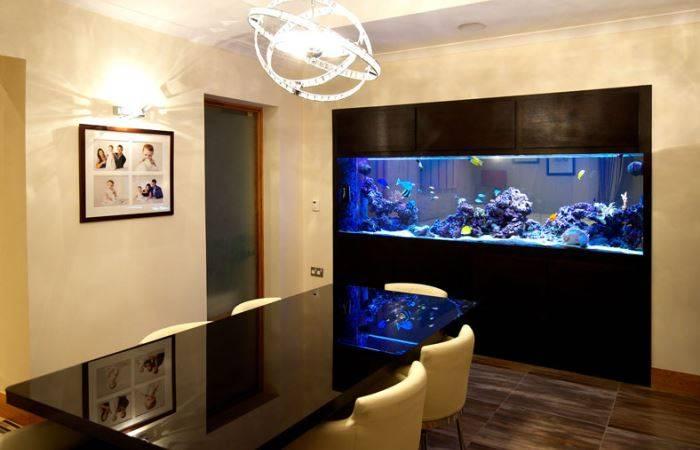 Встроенный аквариум в интерьере