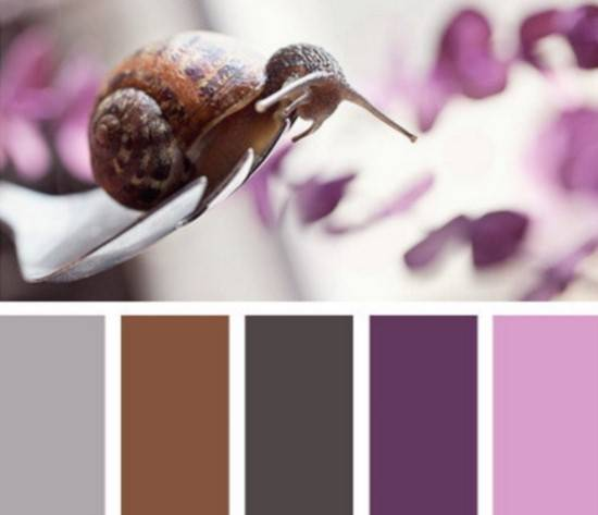 Роскошная фиолетовая палитра