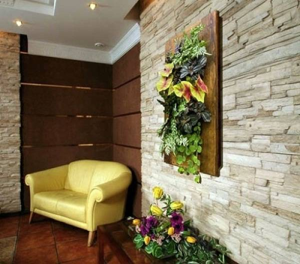Комнатные растения на стенах