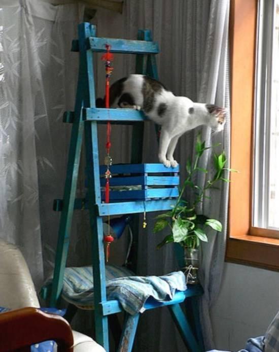 Деревянный домик для кошки своими руками