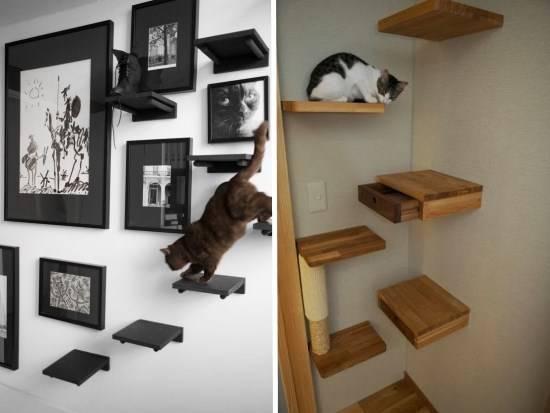 Настенные полки для кошки