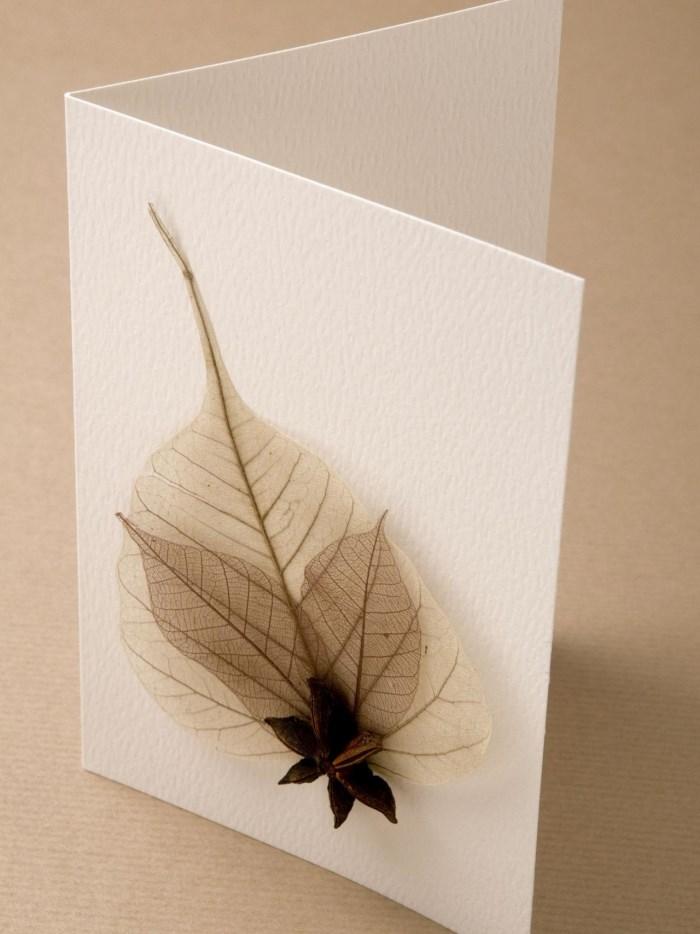 Поздравительная открытка из природных материалов
