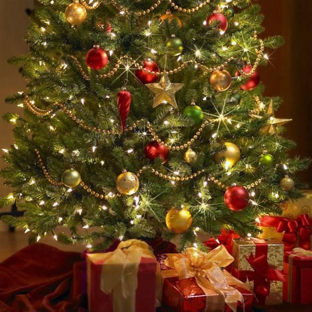 Красные и золотые шары на зеленой елке