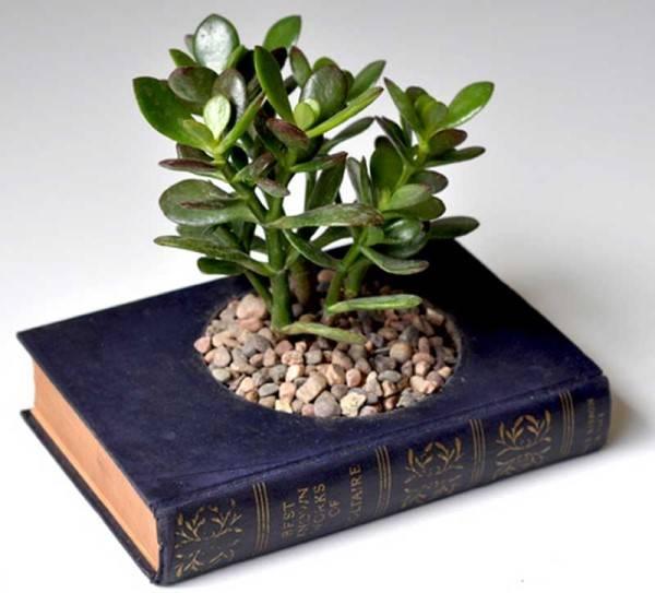 Горшок для растений из книги