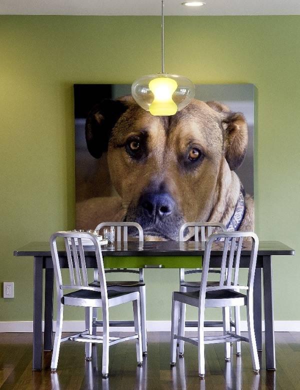Фото собаки как украшение стены