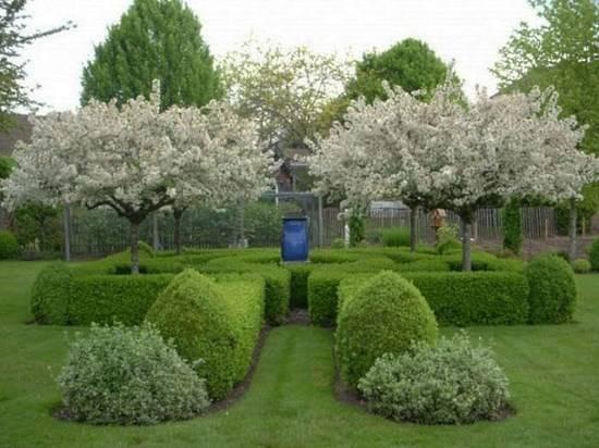 Маленький лабиринт в саду возле дома