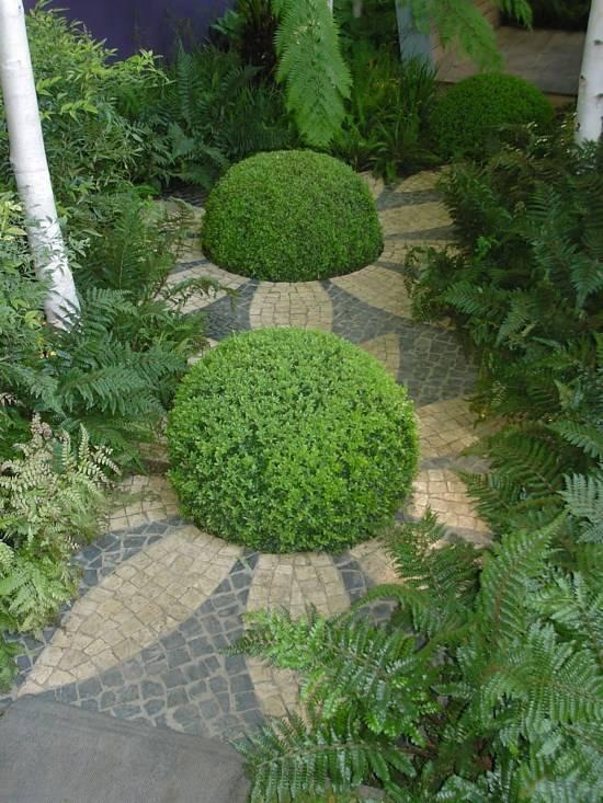 Необычная посадка растений в саду