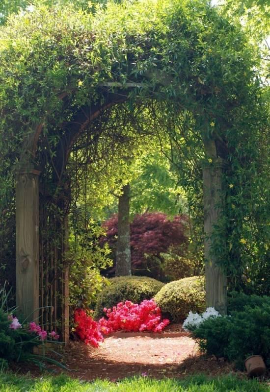 Арка с растениями в дизайне сада