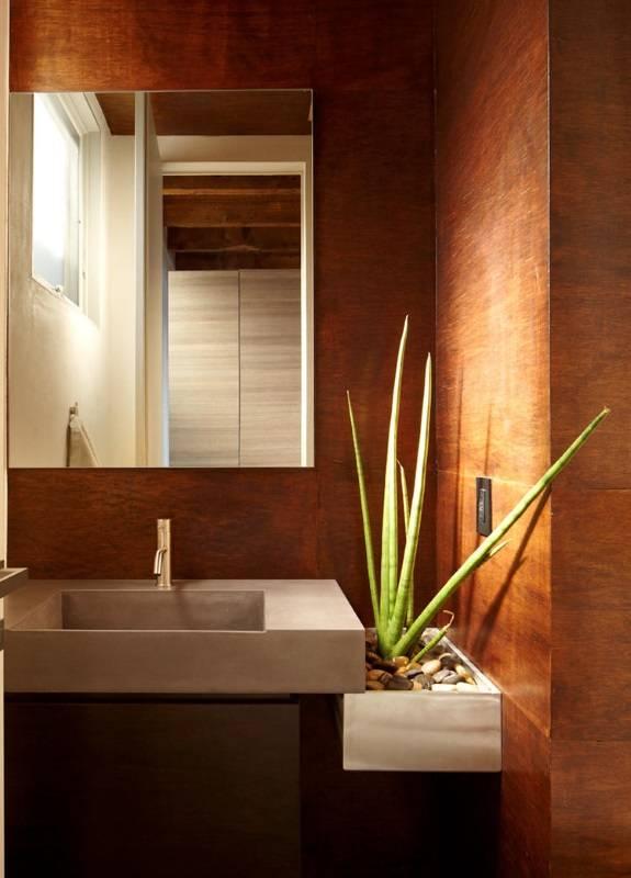 Алоэ вера в современной ванной комнате