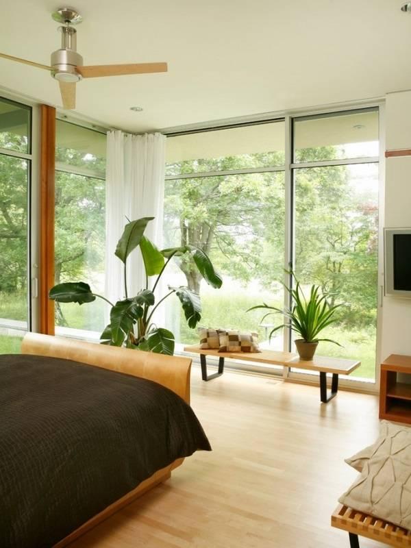 Большие окна и комнатные растения в спальне