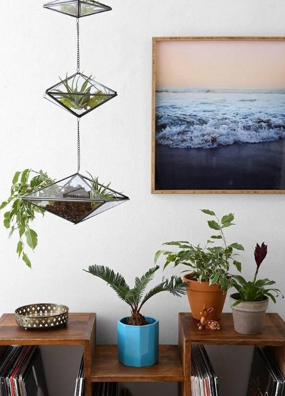 Подвесной декор - стеклянные горшки с растениями