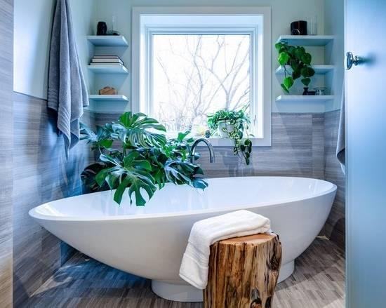 Небольшая ванная с зелеными растениями
