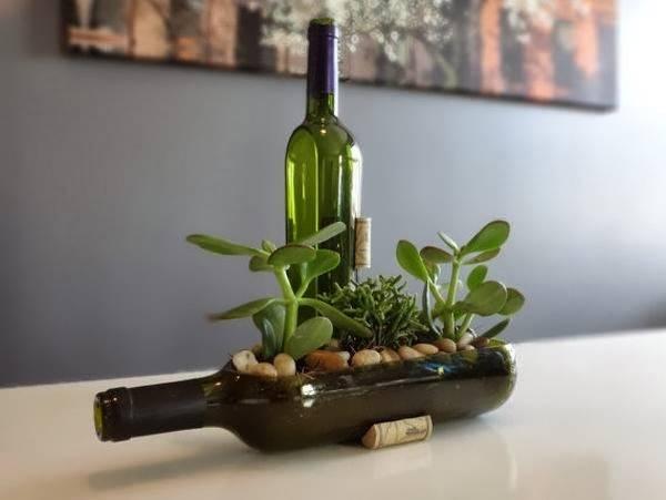 Растения в бутылке как декор