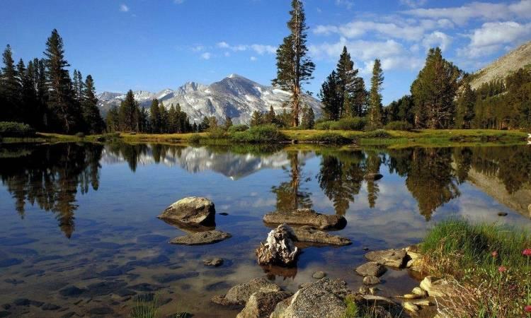 Отдых в национальном парке Йосемити (США)