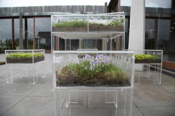 Идея для дома с прозрачной мебелью