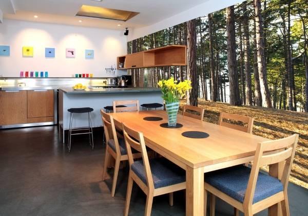 Современный дизайн кухни с фотообоями