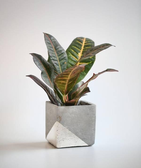 Горшок для комнатного растения своими руками