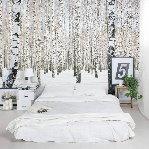 Фотообои для спальни Березы