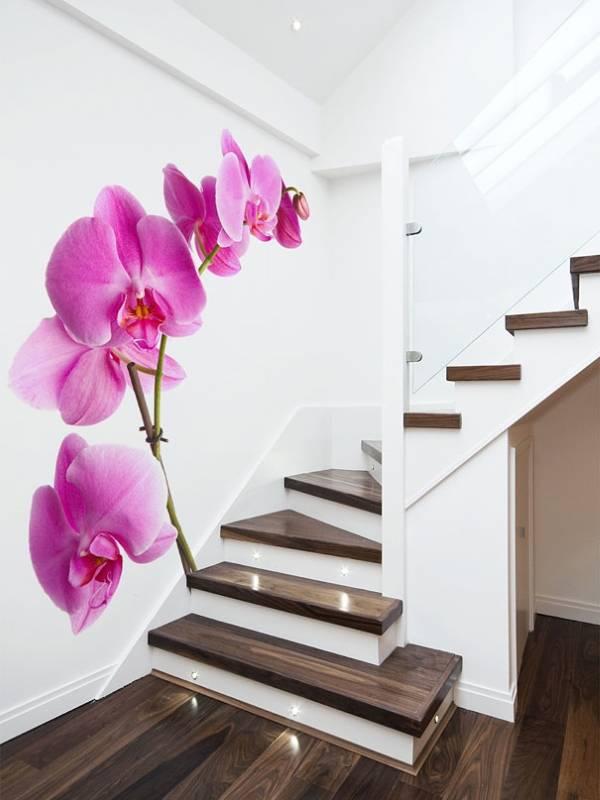 Фотообои орхидеи на лестнице