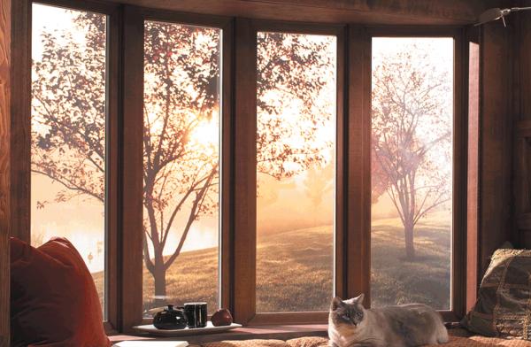 Хорошие окна из стекловолокна