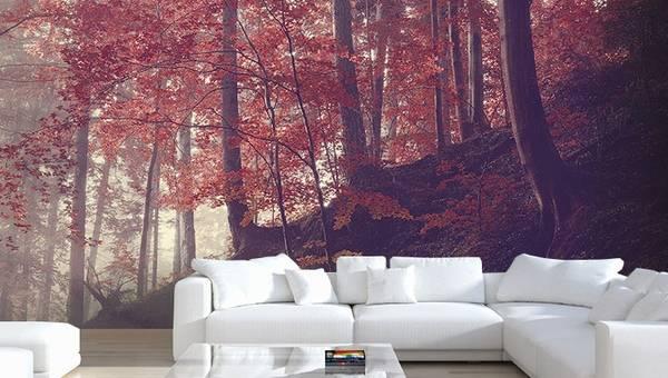 Фотообои в квартире на стене за диваном