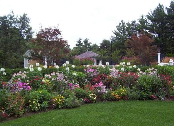 Создаем красивый сад с цветами