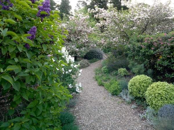 Красивый дизайн садового участка с деревьями