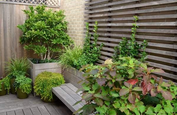 Садовый дизайн в минималистском стиле