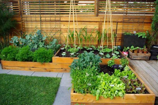 Деревянные клумбы и контейнеры в дизайне сада