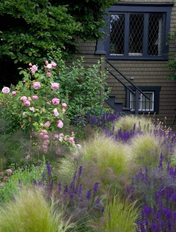 Садовый дизайн своими руками - высокие растения и кусты