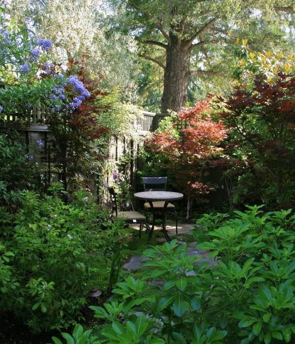 Заросший дизайн садового участка - фото