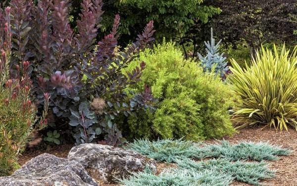 Садовый дизайн с крупными камнями