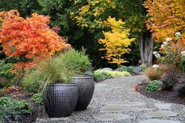 Лучшие материалы и покрытия для дорожек в саду