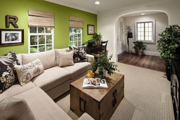 Дом по фен шуй - фото советы для гостиной и других комнат