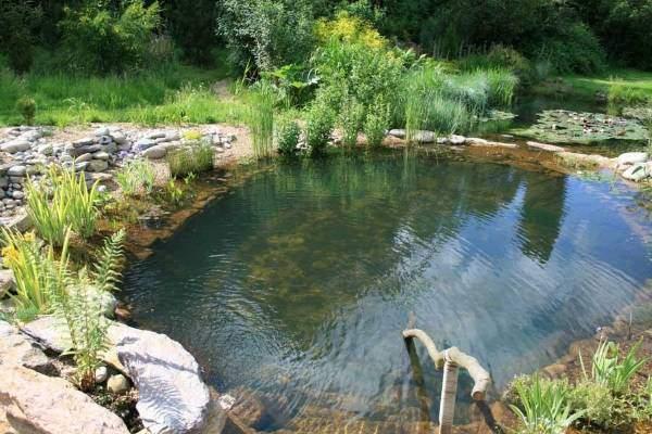 Красивые бассейны - дизайн своими руками с фото