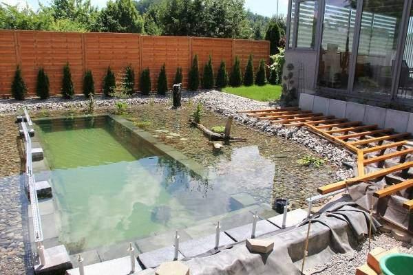 Неглубокий пруд или бассейн на участке своими руками фото