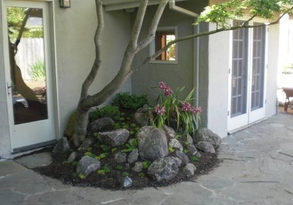 Небольшая альпийская горка с деревом возле дома