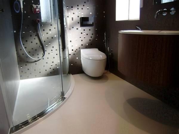 Совмещенный санузел с навесной сантехникой и душем