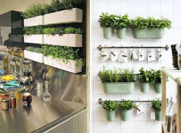 Где посадить травы на кухне - модные идеи 2017
