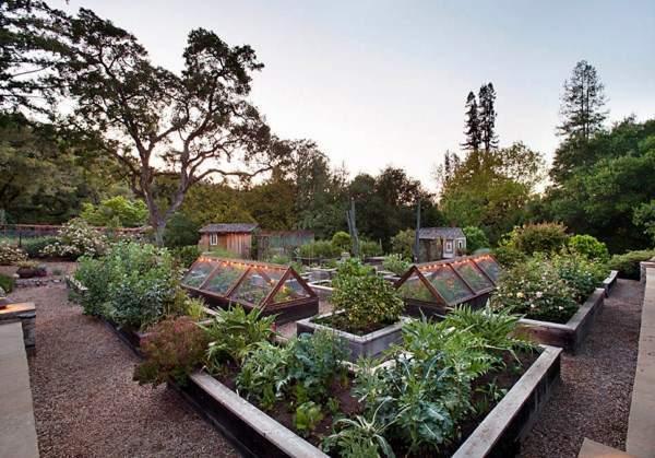 Дача - загородный дом: ландшафтный дизайн участка
