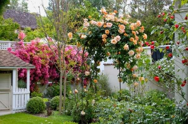 Ландшафтный дизайн частного дома - лучшие идеи 2017 с цветами