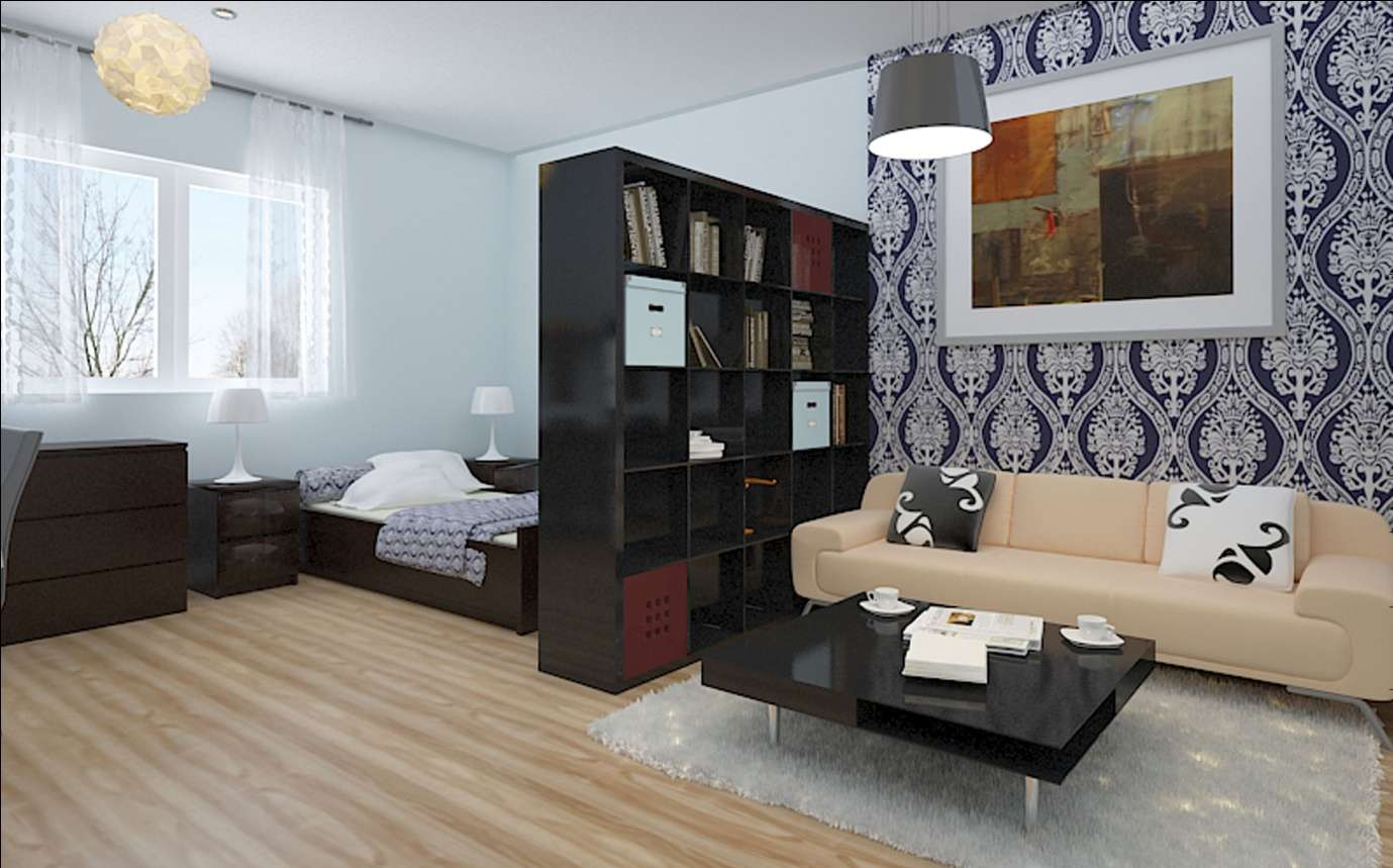 Фото интерьера спальни и гостиной в 1-комнатной квартире