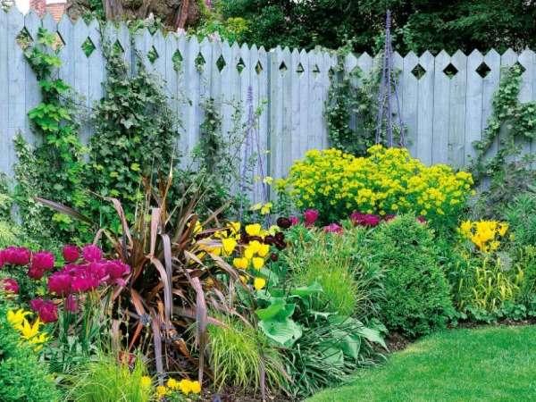 Ландшафт двора своими руками - контрастные цвета