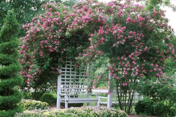 Ландшафтный дизайн двора своими руками - фото беседки в саду