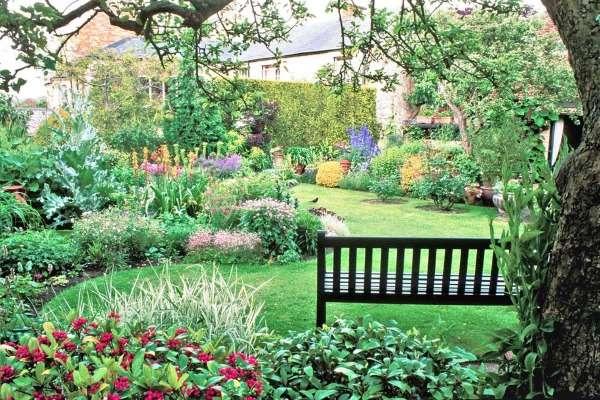 Ландшафтный дизайн частного дома своими руками с растениями