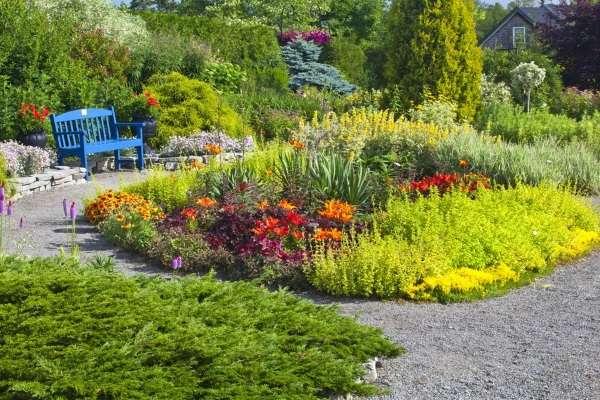 Ландшафт двора своими руками - фото реальных участков