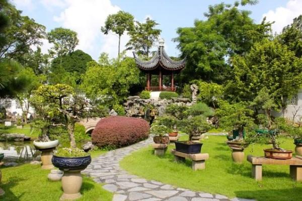На фото 3: Ландшафтный дизайн двора