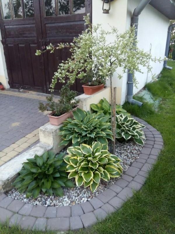 Ландшафтный дизайн двора на фото