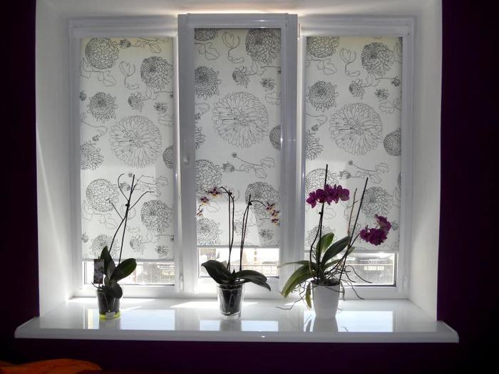 Римские шторы на пластиковые окна закрытого типа с рисунком