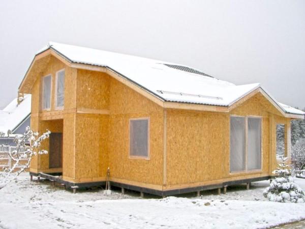 Панельно-каркасная технология строительства каркасного дома фото 2